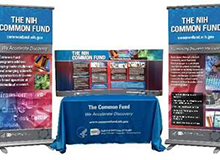 Common Fund Exhibit