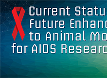 Animal Models for AIDS Research banner
