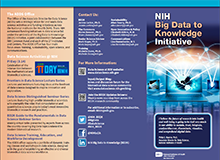 NIH Big Data to Knowledge Brochure